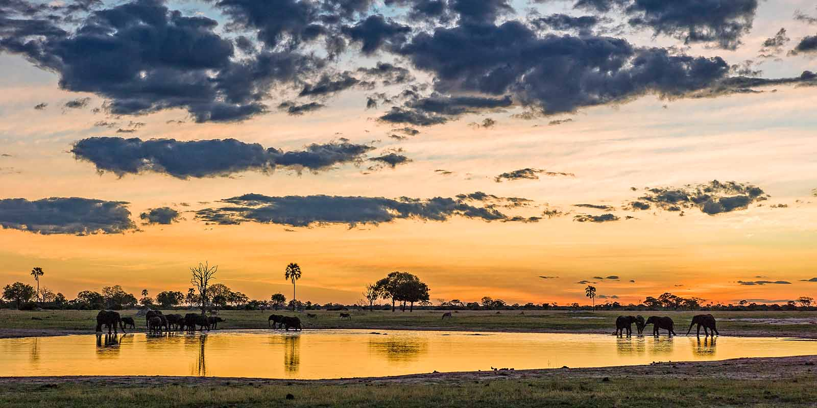 Hwange Sunset Off the Track